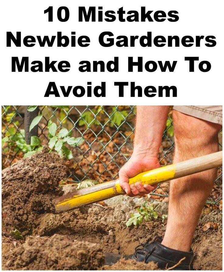 Gardening & Landscape