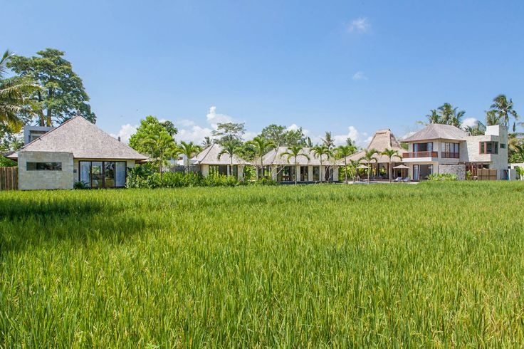 Villa Lumia Bali - Overview from the neighboring rice fields www.villalumaibali.com