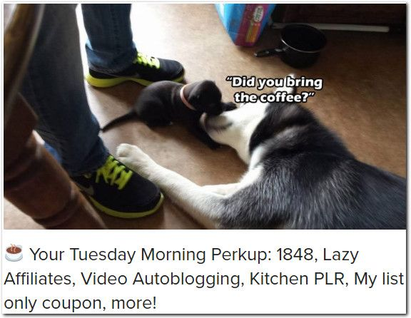 ☕ Your Tuesday Morning Perkup: 1848, Lazy Affiliates, Video Autoblogging, Kitchen PLR, My list only coupon, more!