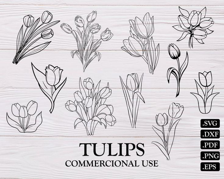 TULIPS SVG, tulip svg, flower svg, spring svg, tulip