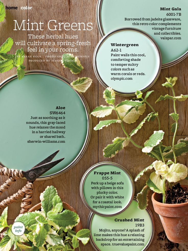 Minty greens: BHG March 2013