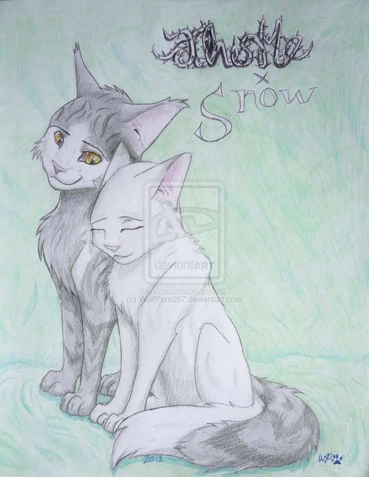 I Don T Care I Ship It Warrior Cats