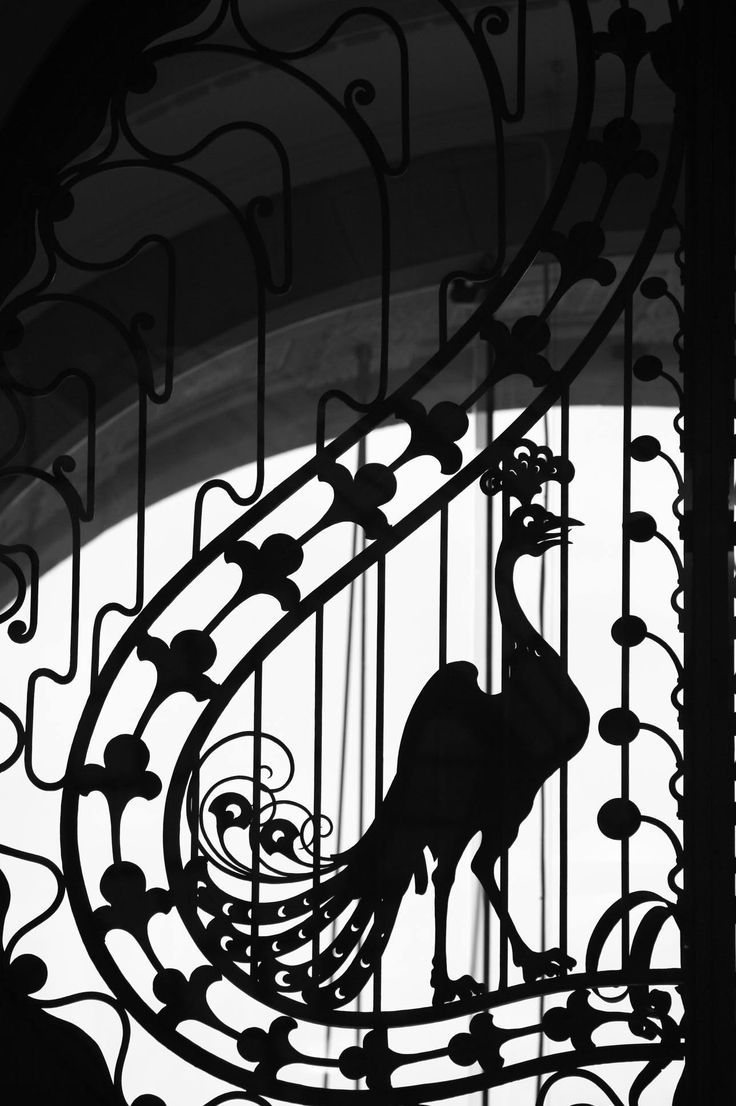 A graceful peacock on one of the wrought iron gates of the Gresham Palace, made in the workshop of Gyula Jungfer.