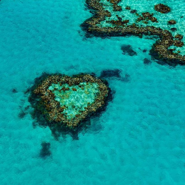 Heart Reef - It is commonly said that the Whitsundays are situated in the heart of the Great Barrier Reef and Heart Reef proves it.  Heart Reef is a naturally formed composition of coral that is shaped like a heart.  The heart forms its own little reef lagoon on the inside.