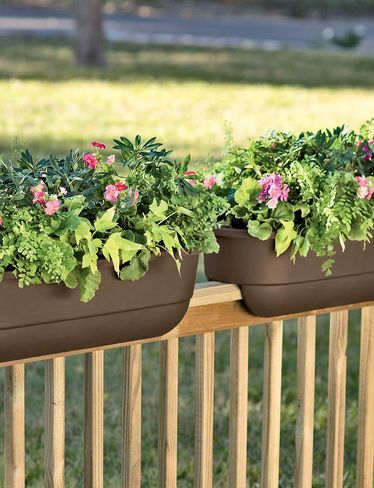 railing planters for back deck - Railing Planters