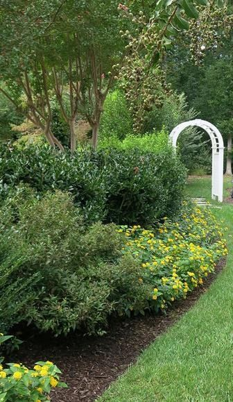 Looking for landscaping ideas or to add curb appeal to your front yard? Don't miss our tips on how to edge your garden, whether it's a walkway or flowerbeds.