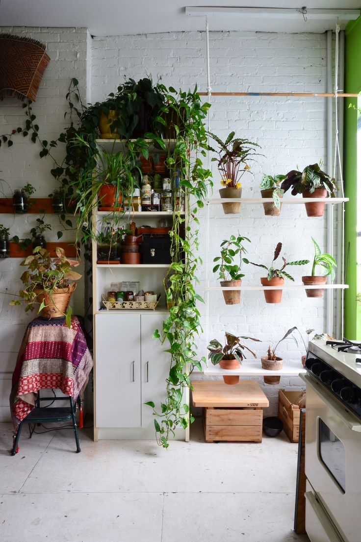 An Indoor Jungle Grows in a Brooklyn Apartment- The hanging shelves for plant pots, I want to make one. Plant's bring peace to the home.