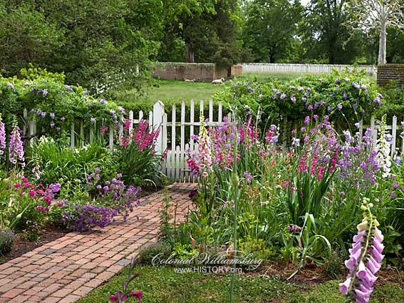 1000 Images About Colonial Gardens On Pinterest Gardens