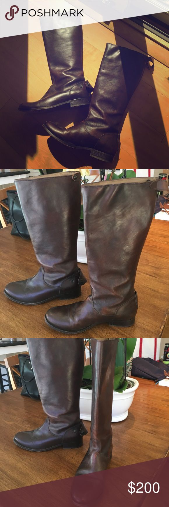 Frye Melissa Button Back Zip Boots (Talk) Tall brown leather boots with wide calf and zippers and clasps on back.  Slight scuffing but barely worn and in great condition! Originally bought for 388 Frye Shoes Winter & Rain Boots