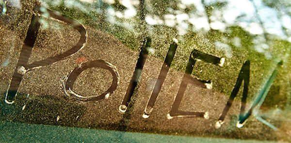 Il existe des gestes simples pour lutter contre l'allergie au pollen.  Découvrez l'astuce ici : http://www.comment-economiser.fr/allergie-pollen-que-faire.html?utm_content=buffer71a45&utm_medium=social&utm_source=pinterest.com&utm_campaign=buffer