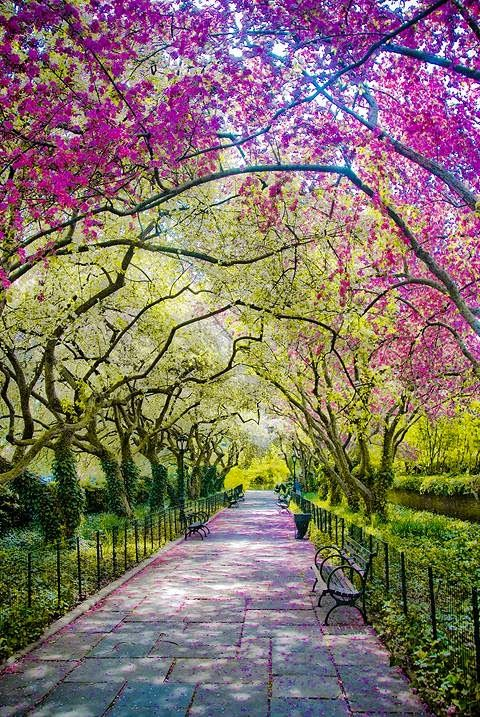 French Garden, Conservatory Garden, Central Park new york city