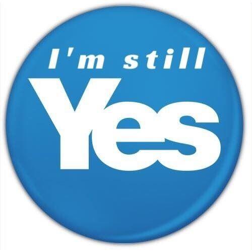 Still Yes!