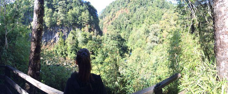 Trekking Salto El Puma, Huilo Huilo, Chile.