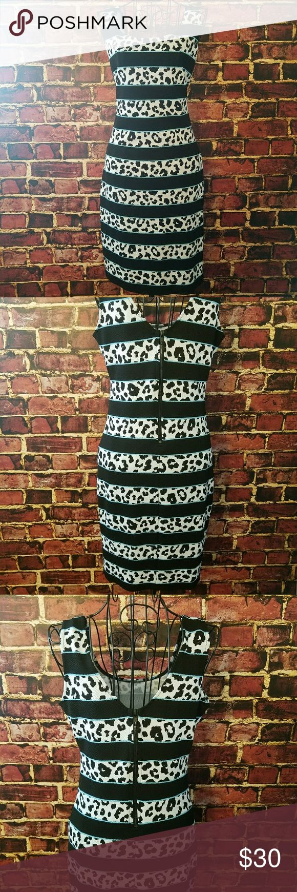 Bar lll Striped Leopard print dress Stylish and sexy animal print summer dress by Bar lll.  Great option for date night, special occasion or vacation. Bodycon. Half zipper in back. Stretchy.  Lightweight.  Polyester/Spandex blend.  Great condition. Bar III Dresses