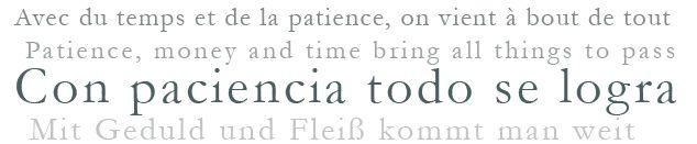 El Refranero multilingüe contiene una selección de paremias españolas populares, principalmente refranes y frases proverbiales, con su correspondencia en varias lenguas (alemán, catalán, francés, gallego, griego antiguo, griego moderno, inglés, italiano, polaco, portugués, rumano, ruso y vasco). Se trata de un refranero multilingüe único en el mundo no sólo por esta combinación lingüística sino también por la información aportada para cada paremia española: sus posibles variantes y…