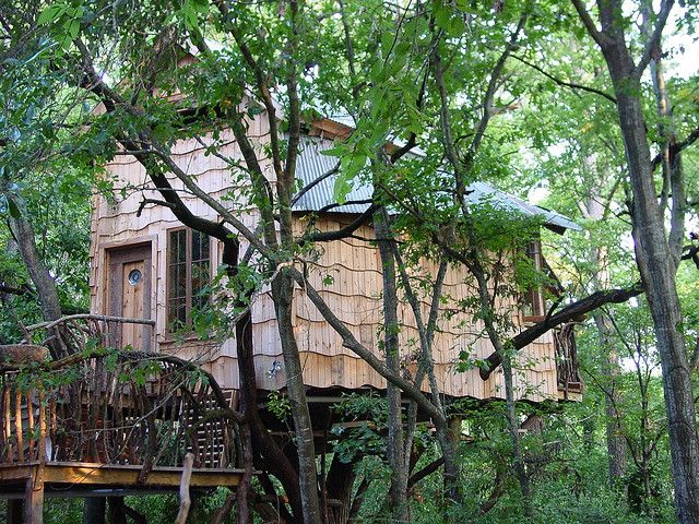 treehouseNice Treehouse, Real Treehouse, Commotion Trees, Creative House, Tree Houses, Texas, Trees House