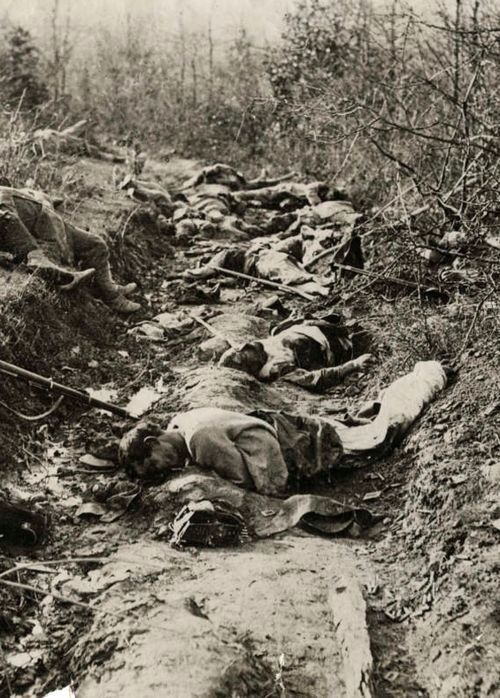 A trench lies still with the bodies of Austrian soldiers, 1915.