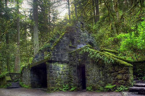 The Stone House on Balch Creek. Portland, Oregon. The Stone House is located in Portland's Forest Park, one of the largest urban forested parks in the United States. It was built during the Depression as a WPA project. It was once a rest station in the forest.