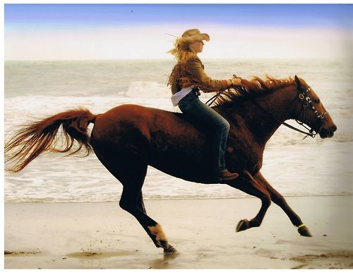 bareback riding, the best feeling in the world and the best way to learn how to ride. Now get rid of that bridle. No saddle. No bridle. Then you can say you know how to ride a horse.