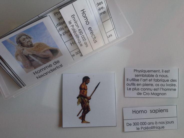 cartes de nomenclature - hommes préhistoriques + rois de France