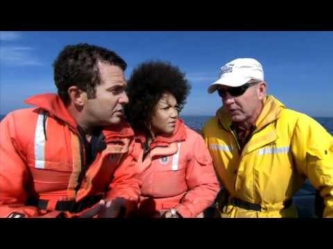 Quand une vedette du petit écran, Rick Mercer, et une chanteuse d'opéra, Measha Brueggergosman, se rencontrent à Saint Andrews, que font-ils? Ils partent à la rencontre des baleines de la baie de Fundy. http://www.tourismenouveaubrunswick.ca/Se-divertir/Activitesenpleinair/Fauneetviemarine.aspx?utm_campaign=tnb+social&utm_medium=owned&utm_source=pinterest