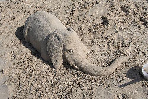 Baby Elephant Hidden in the Sand Optical Illusion - http://www.moillusions.com/baby-elephant-hidden-sand-optical-illusion/