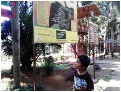 Luas Kebun Binatang Medan 30 Hektar, Hewannya Memprihatinkan!