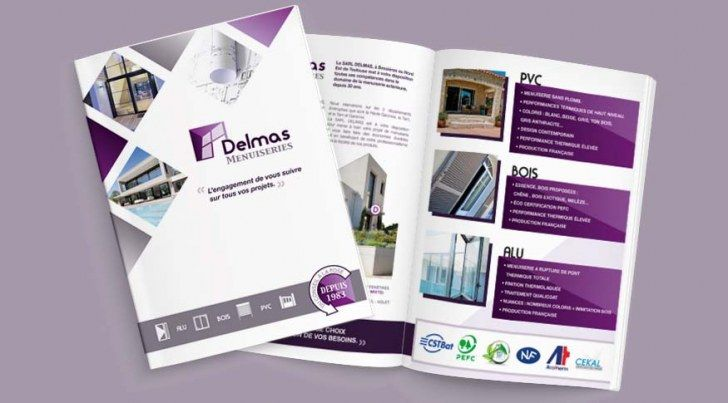 C' la Com | Logo et charte graphique entreprise Delmas - C' la Com