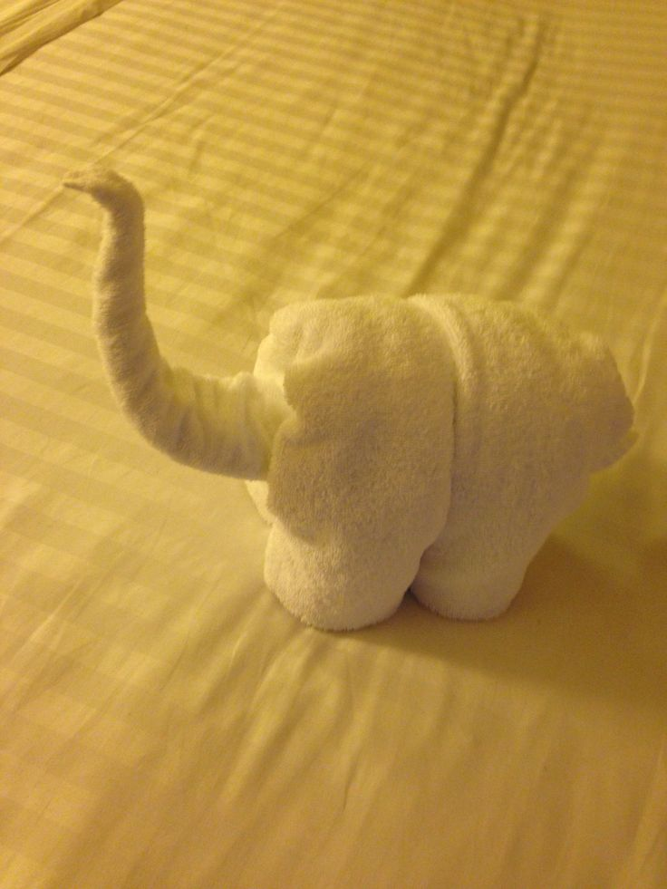Every day the room maid would leave us a towel creations