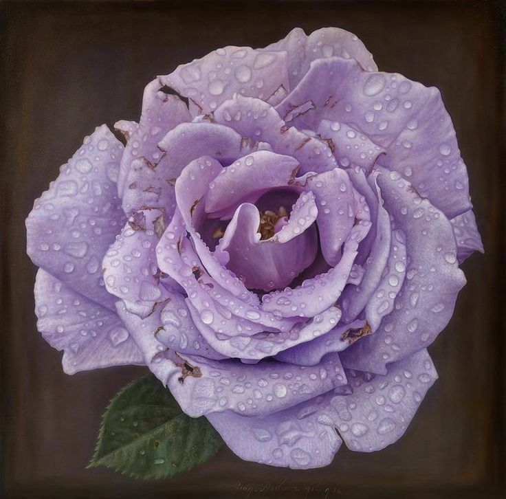 Delicate-hyper-realistic-paintings-of-roses-by-Gioacchino-Passini-08.jpg (740×730)