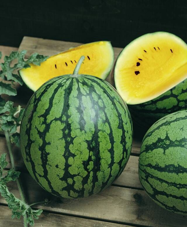 Watermelon Yellow Doll (non-heirloom)     One of the earliest maturing hybrids. 68 days. Crisp, extra-sweet yellow flesh! Small, 5- to7-lb. fruit has a thin rind and few seeds. Semi-compact vines.