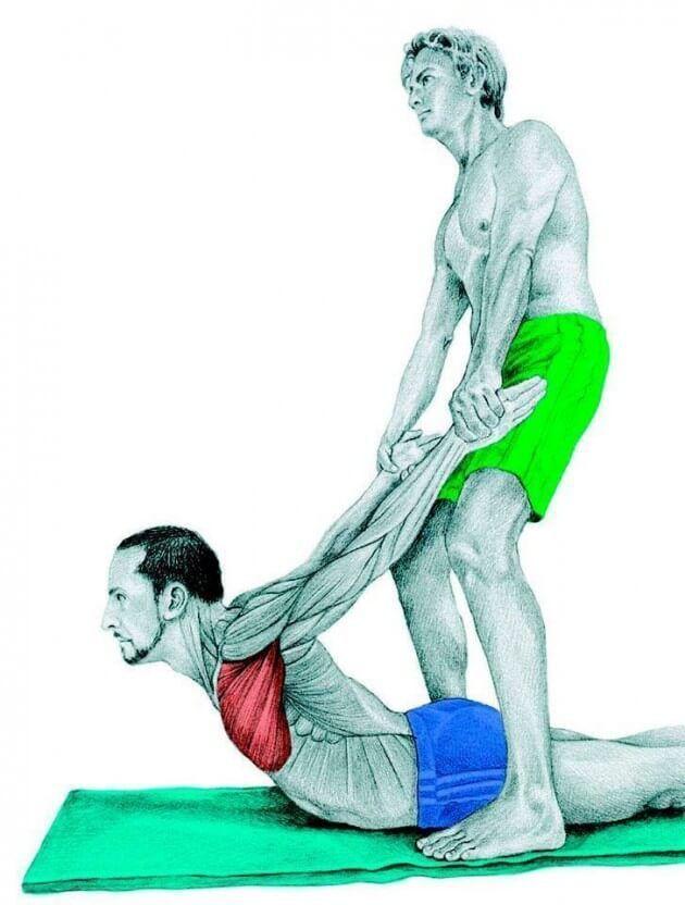 йога с картинками какие мышцы дробны тянуть музее