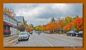 Vol XV #210 - Fall Frenzy in Greater Downtown Leland