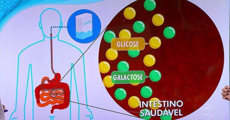 Intolerância é diferente de alergia à lactose; Bem Estar explica