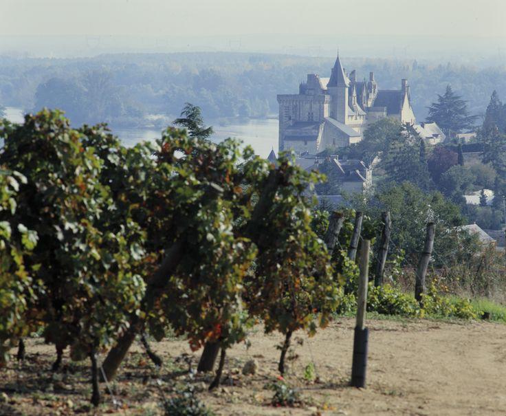 18 best Loire Valley images on Pinterest Architectural drawings - chambre d agriculture du loir et cher