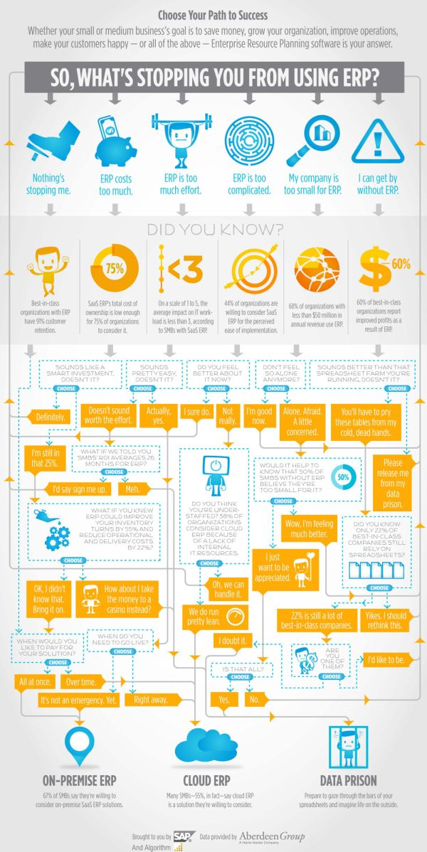 Cloud vs. On-Premise Enterprise Resource Planning