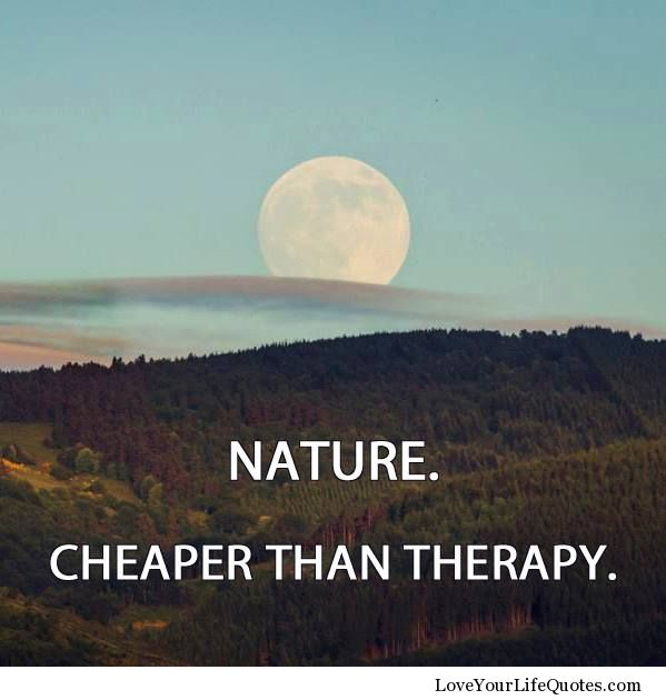 Life And Nature Quotes: Positive Quotes