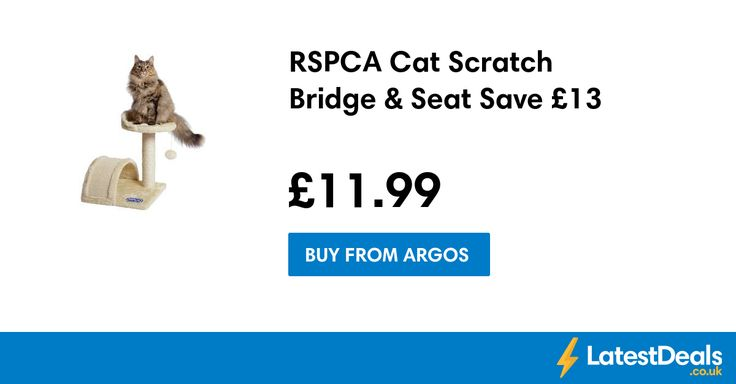 RSPCA Cat Scratch Bridge & Seat Save £13, £11.99 at Argos