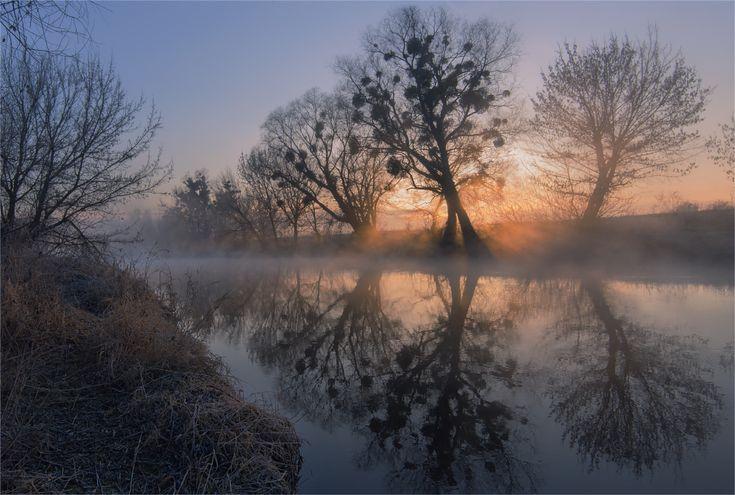 Фотография Отражения реки Уды / Олег Кругляк / photographers.com.ua