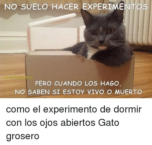 Resultado de imagen para gato cientifico