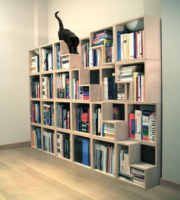Cat Shelves + bookshelf