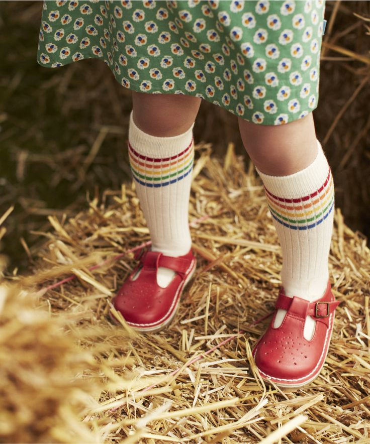 Little Bird By Jools Oliver Buckle Shoes - shoes & boots - Mothercare It's actually the socks I love