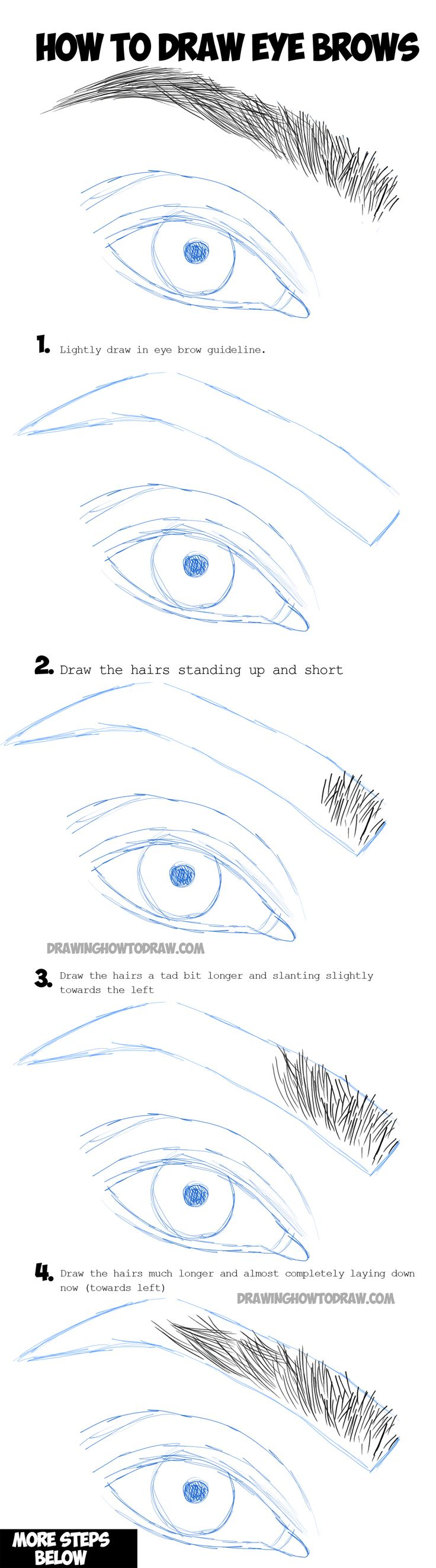 Best 25 eye anatomy ideas on pinterest what is thinking human learn how to draw eye brows step by step drawing tutorial pooptronica