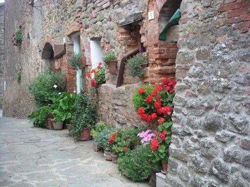 #Rigomagno #Montepulciano⊙around