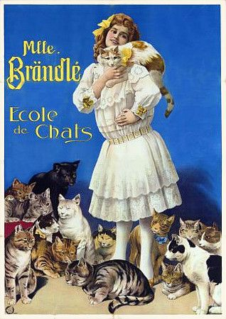 Vintage circus poster - Miss Brandle's School of Cats (1911)