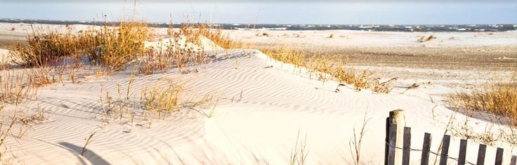 Charleston SC Beach House Rentals | Wild Dunes Resort | Charleston SC Vacation Home Rentals
