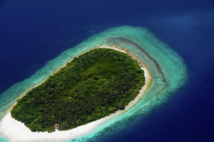 Aerial View Of Deserted Island. Maldives by Jenny Rainbow