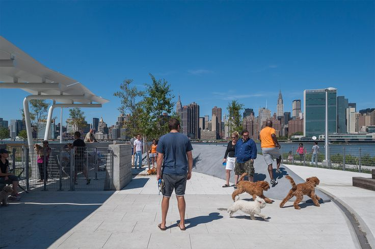 Dog Run At Hunters Point South Waterfront Park Designed By Thomas Balsley Associates And Weiss Manfredi Photo Cre Park Park In New York Landscape Architecture