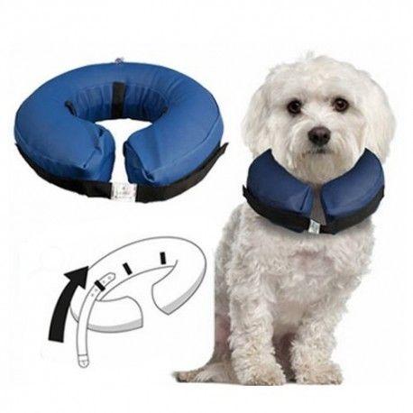 #Collar #Isabelino #inflable #hinchable #perro #perros #gato #gatos