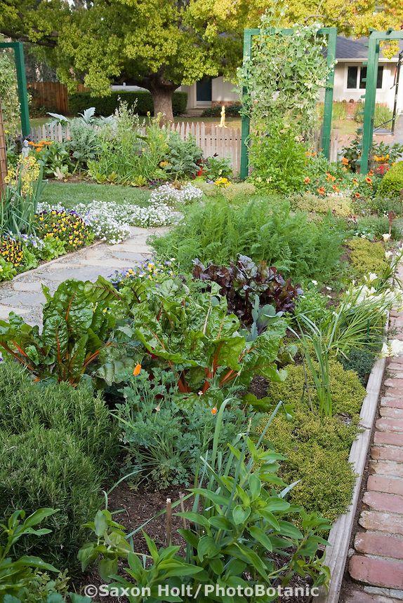 132 best images about front gardens on pinterest gardens for Ornamental vegetable garden design
